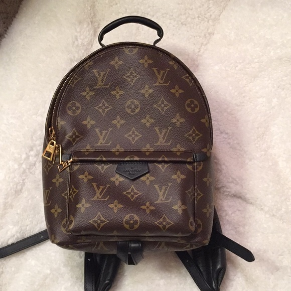 Authentic Louis Vuitton Palm Springs Backpack PM 4b0e16ca30e9e
